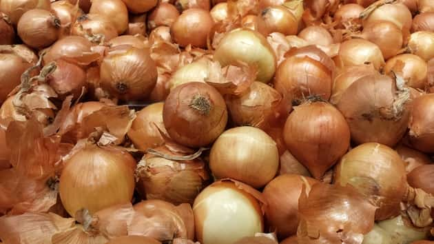 onions from farm