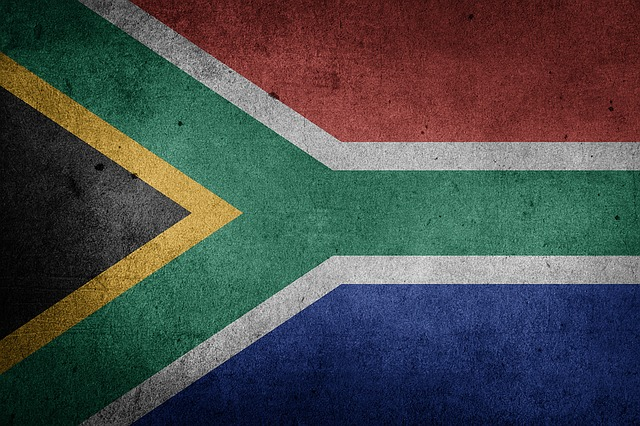 franchises that south africans are interested