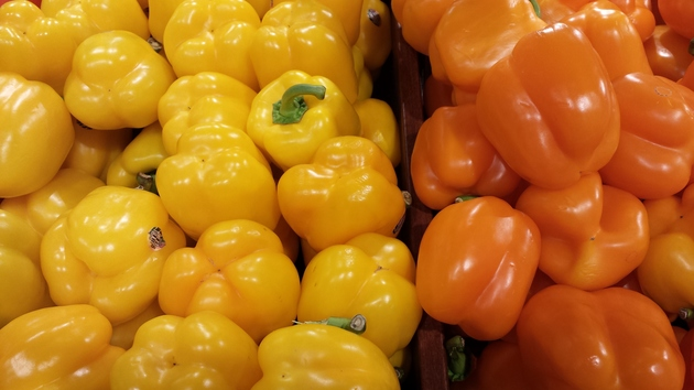 fresh bell peppers capcicums