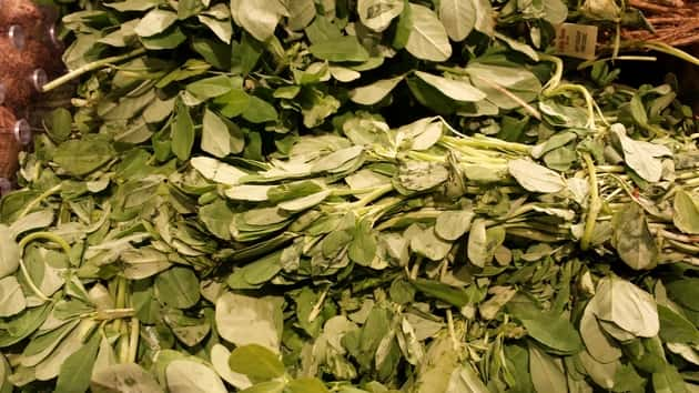 fresh fenugreek leaves