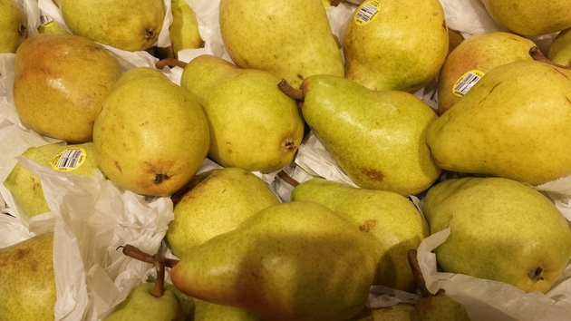 pears from farm