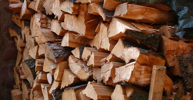 selling firewood