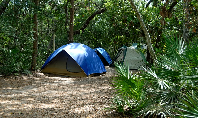 start a primitive campground