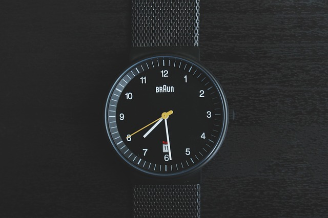 watch company